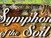 An interview with Deborah Koons Garcia, the filmmaker behind Symphony of the Soil.