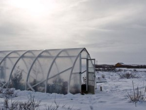 Winter composting compost tips by The Compostess Rebecca Louie
